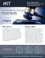 Fact-Sheet-Judges
