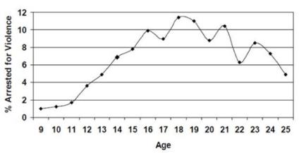 averagejuvenileoffender